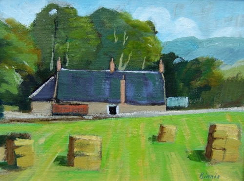 Summer-in-the-Cheviots-14x10